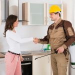 The Importance of Fall Pest Control - One Man and a Lady Bug - Pest Removal Services Calgary