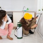 Pest Control in Calgary – Why We Need This Vital Service - One Man and a Lady Bug - Pest Control Calgary