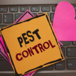 Regularly Scheduled Inspections: How to Keep Your Business Pest Free - One Man and a Lady Bug - Pest Control Calgary