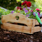 How to Keep Your Garden Pest Free - One Man and a Lady Bug - Pest Control Company Calgary