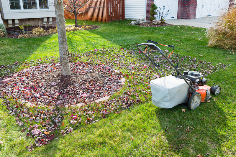 Fall Tree Care - One Man and a Lady Bug - Pest Control Calgary - Featured Image
