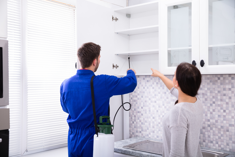 Schedule Annual Inspections - With Experts! - One Man and a Lady Bug - Pest Control Calgary - Featured Image
