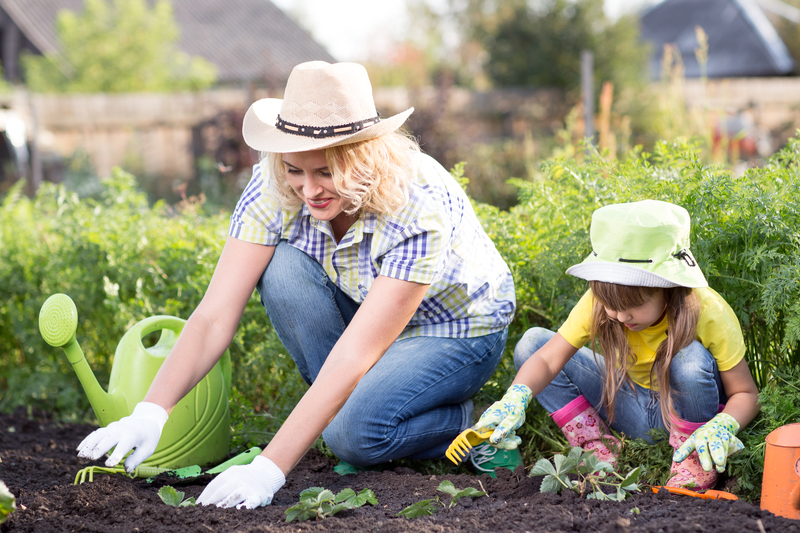 Gardening to Attract the Good Bugs - One Man and a Lady Bug - Pest Control Company - Featured Image