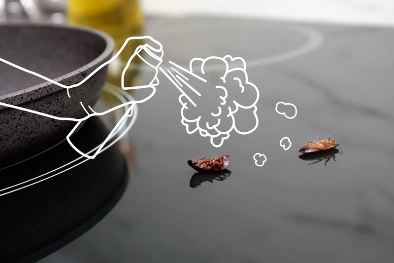 A New Year, A New Pest Inspection - One Man and a Lady Bug - Pest Control Company - Featured Image