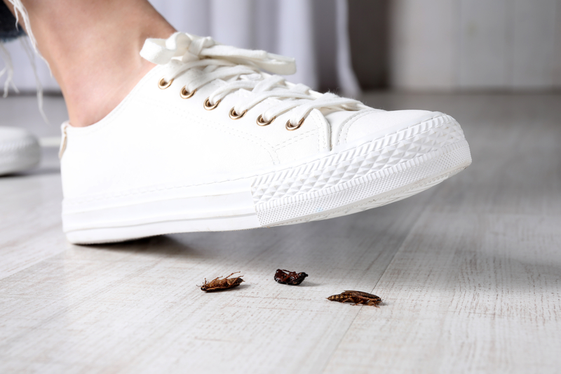 A Guide To Roaches - One Man and a Lady Bug - Pest Control Company - Featured Image